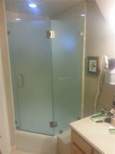 Frameless Shower Door (1)