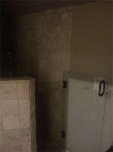 Frameless Shower Door (2)